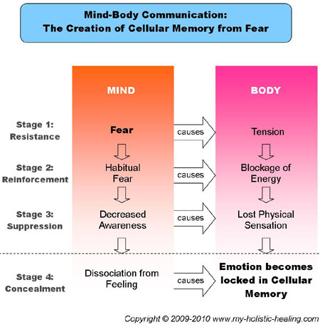 Body Mind And Soul Symbolism